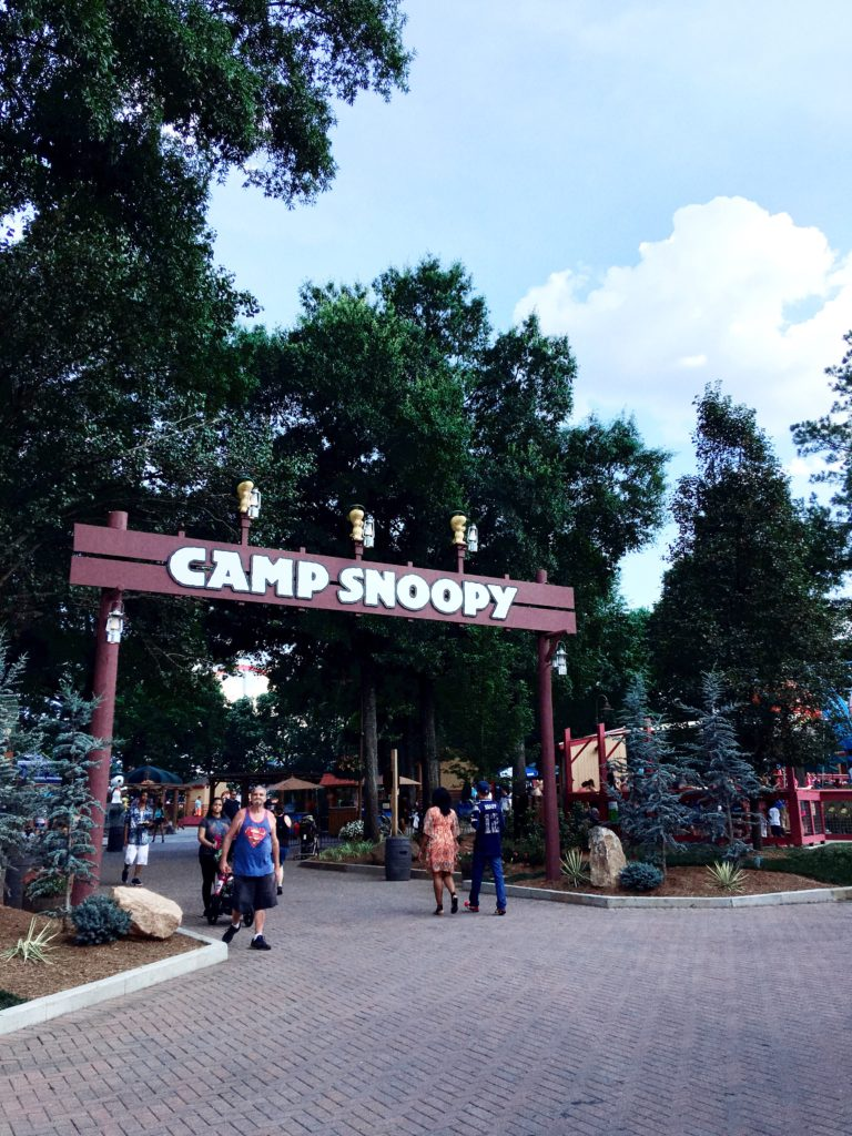 15 Best Hacks For Visiting Carowinds With Toddlers - The